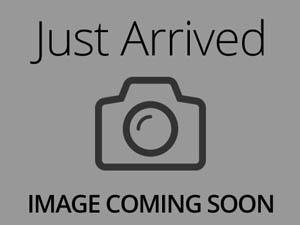 Yorkshire Terrier-DOG-Male-black & tan-3278426