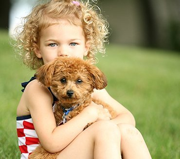 child with a tan poodle puppy