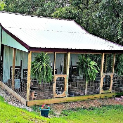 Exterior look at indoor/outdoor kennels