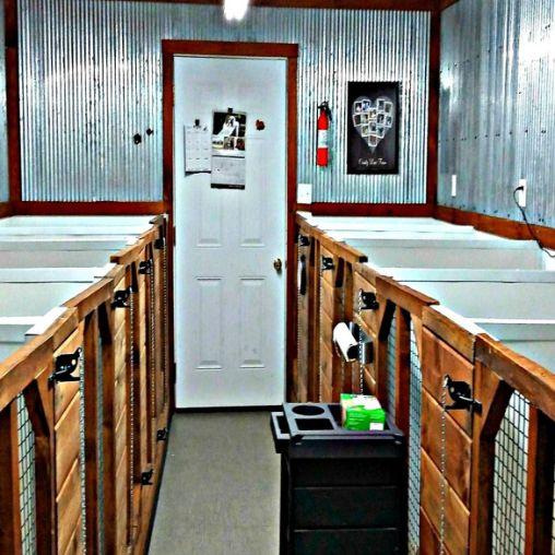 Indoor portion of indoor/outdoor kennels