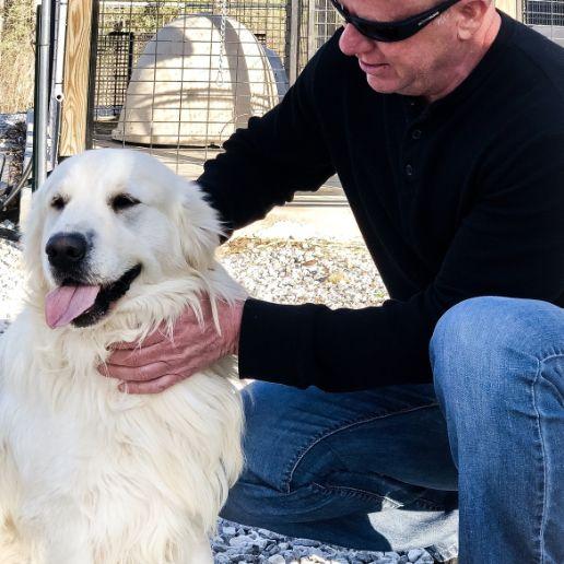 Puppies \\'N Love owner Frank Mineo on 2018 breeder trip