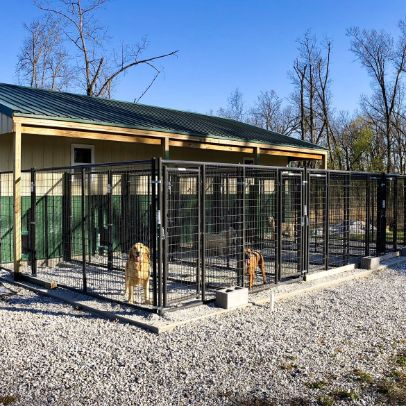 Dogs have spacious indoor/outdoor kennels