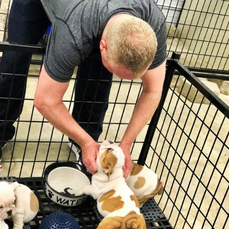 DaPuppies 'N Love & Animal Kingdom Owner Frank Mineo Jr. Plays with Puppies wn14