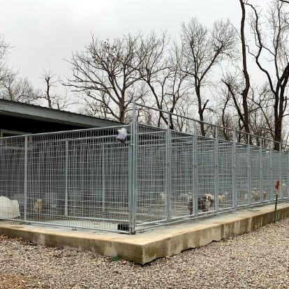 Exterior of kennels