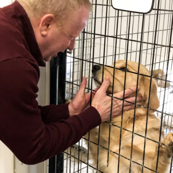 Puppies 'N Love owner Frank Mineo Jr.