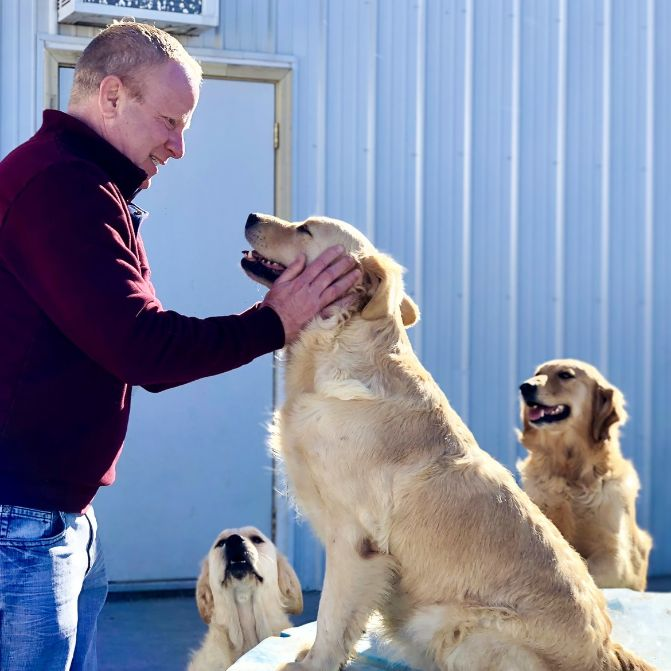 Frank Mineo Jr. playing with dogs