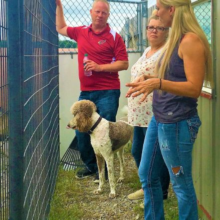 Puppies 'N Love and Animal Kingdom owner Frank Mineo Jr., Animal Health Director Michelle L and Jennifer tour her property