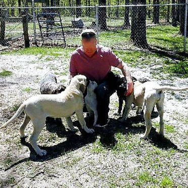 Frank Mineo Jr. playing in yard with dogs