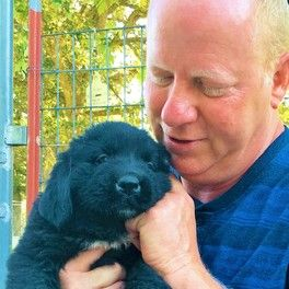 Animal Kingdom and Puppies 'N Love owner Frank Mineo Jr. with a Newfie puppy