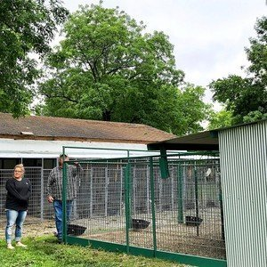 Exterior Look at Kennels