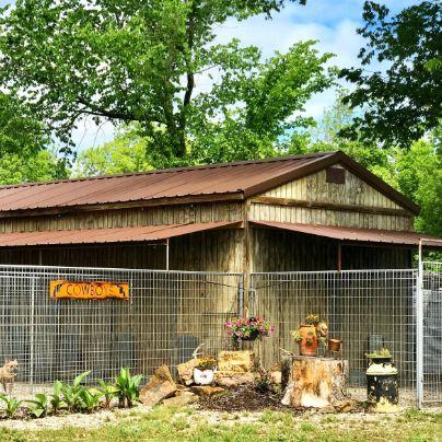 Melissa's Outdoor Kennels