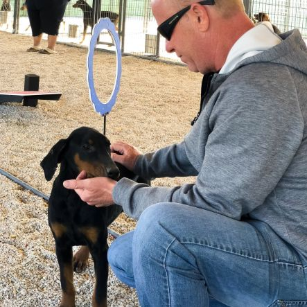 Puppies 'N Love owner Frank Mineo on 2018 breeder trip