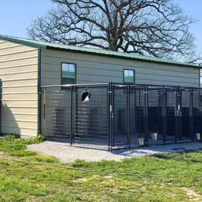 Michelle's indoor/outdoor kennels for dogs