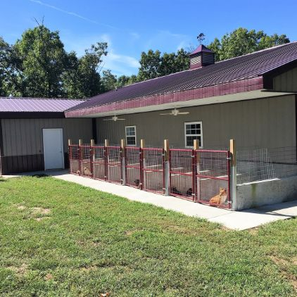 Exterior look at Monica's kennels