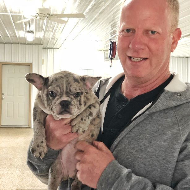 Frank Mineo Jr., CEO of Puppies 'N Love, holds adult French Bulldog