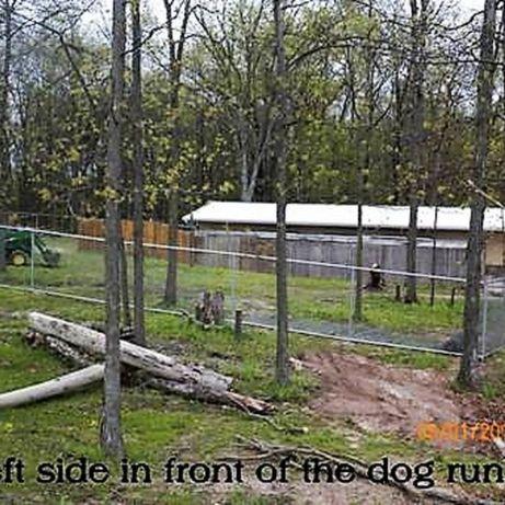 Outdoor dog runs