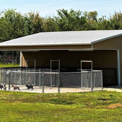 Exterior of kennel's other side