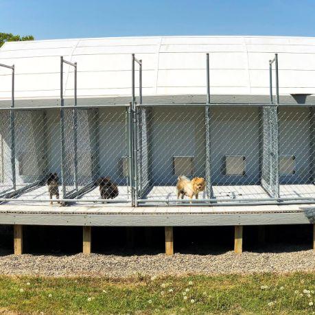 Above ground indoor/outdoor kennel