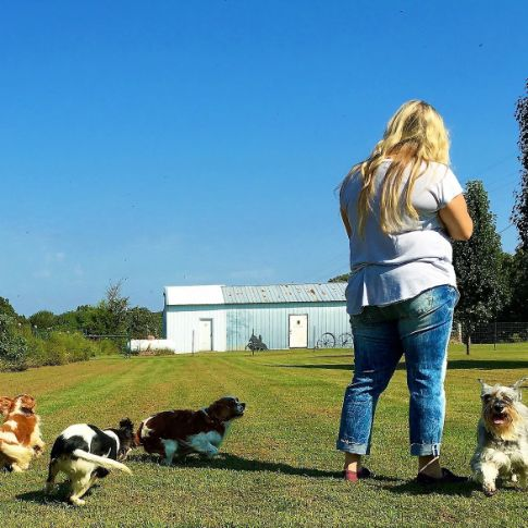 Puppies 'N Love & Animal Kingdom Animal Health Director Michelle L. plays with dogs outdoors