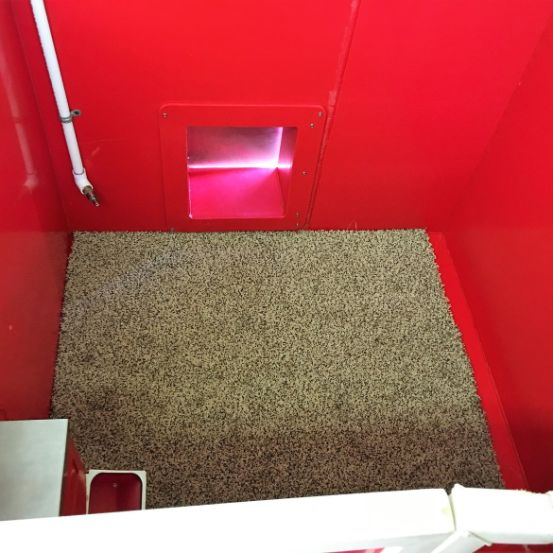 Interior of indoor kennels