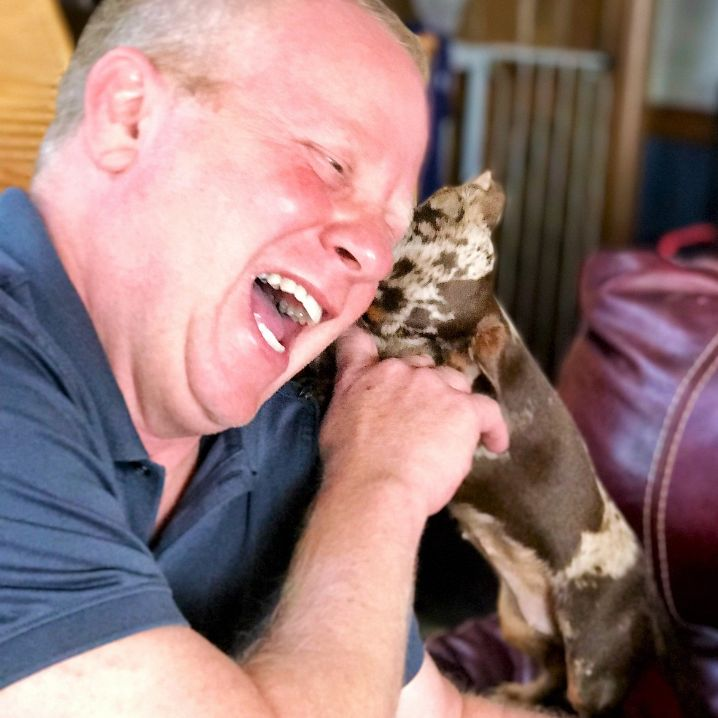 Puppies 'N Love & Animal Kingdom owner Frank Mineo Jr. plays with a mommy Dachshund.