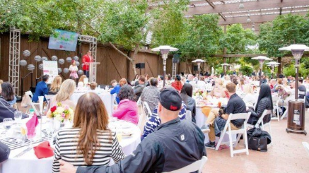 Puppies 'N Love Helps Sponsor $33,000 Fundraiser Puppies Animal Kingdom Arizona