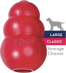 kong dog chewing toy