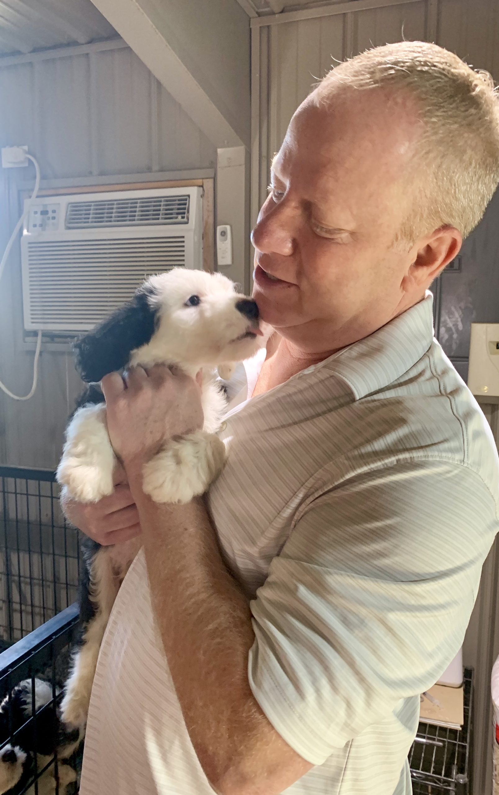 Frank Mineo Jr holds one of Megan's puppies