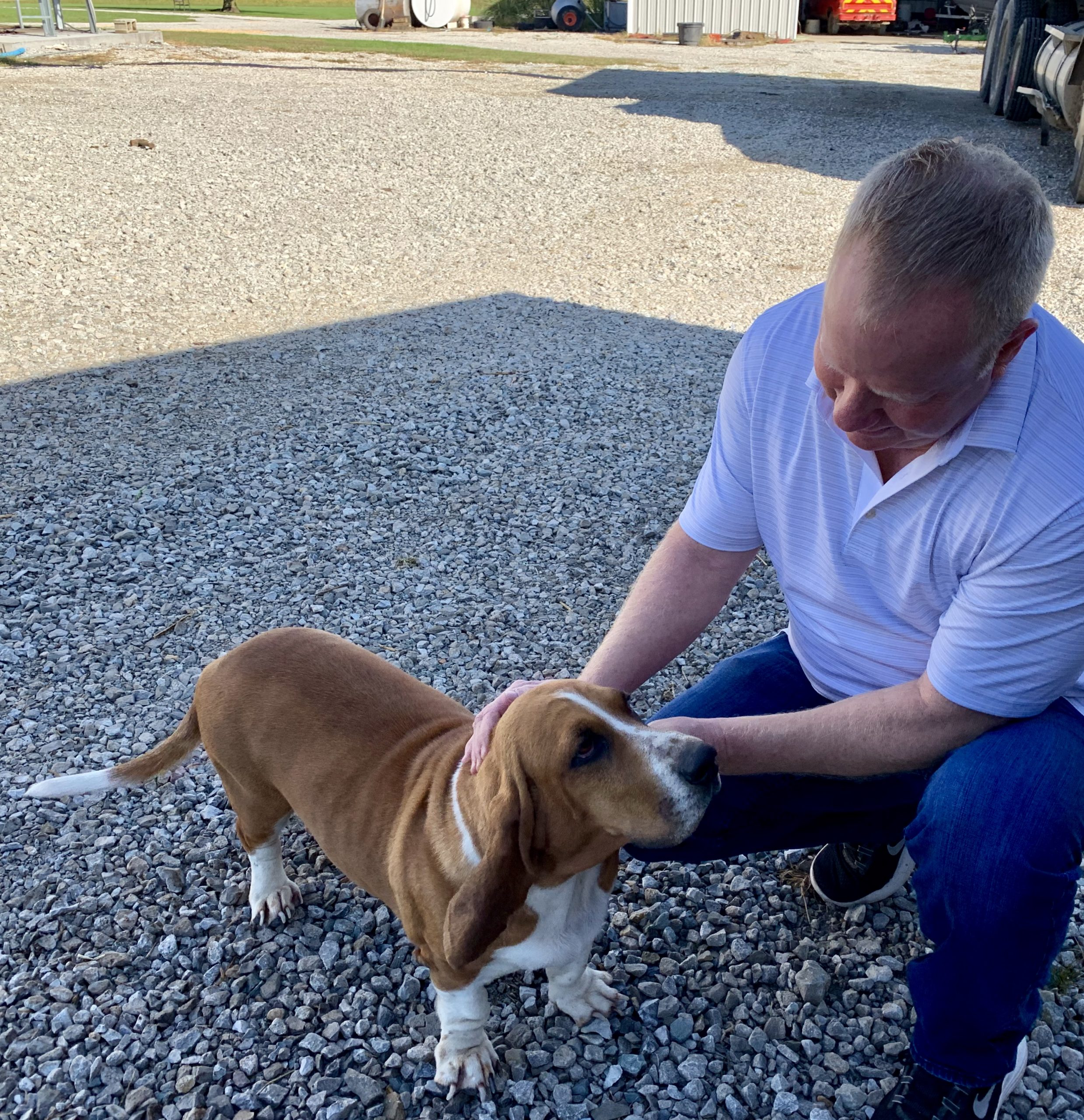Frank Mineo Jr petting one of Megan's adult dogs