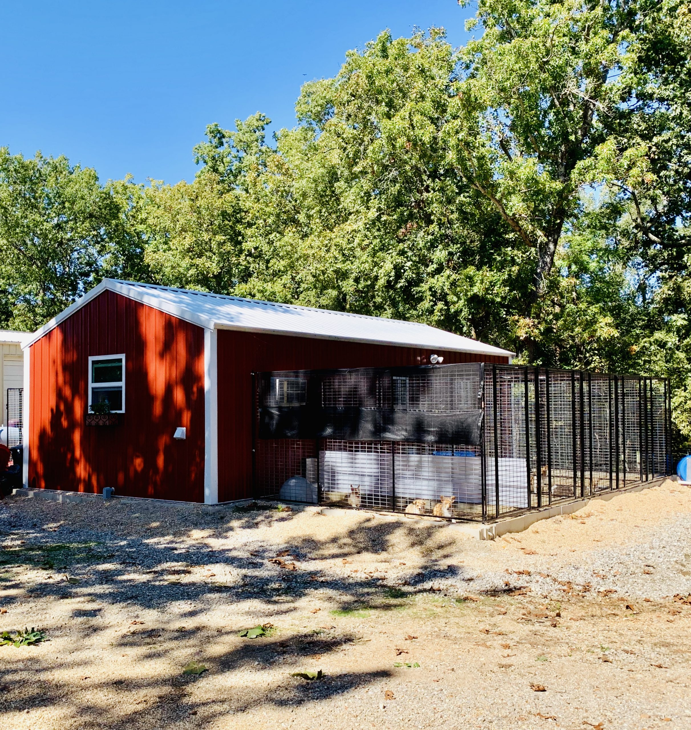 A view of Nancy's kennel