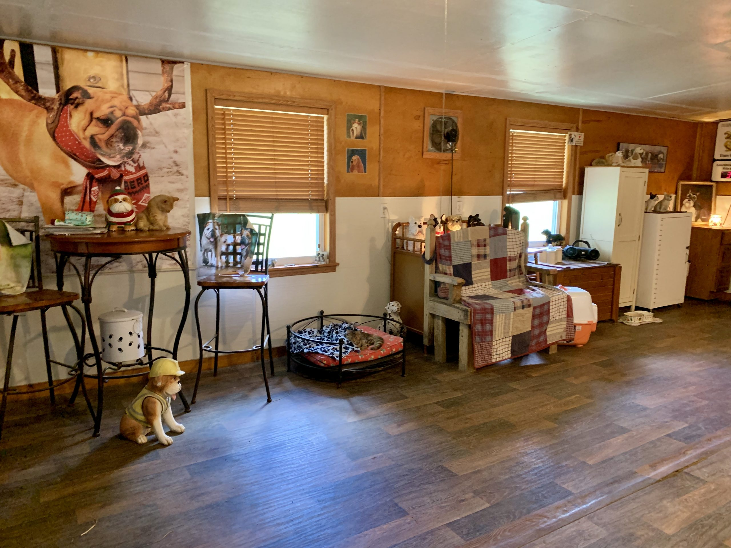 Becky's whelping room
