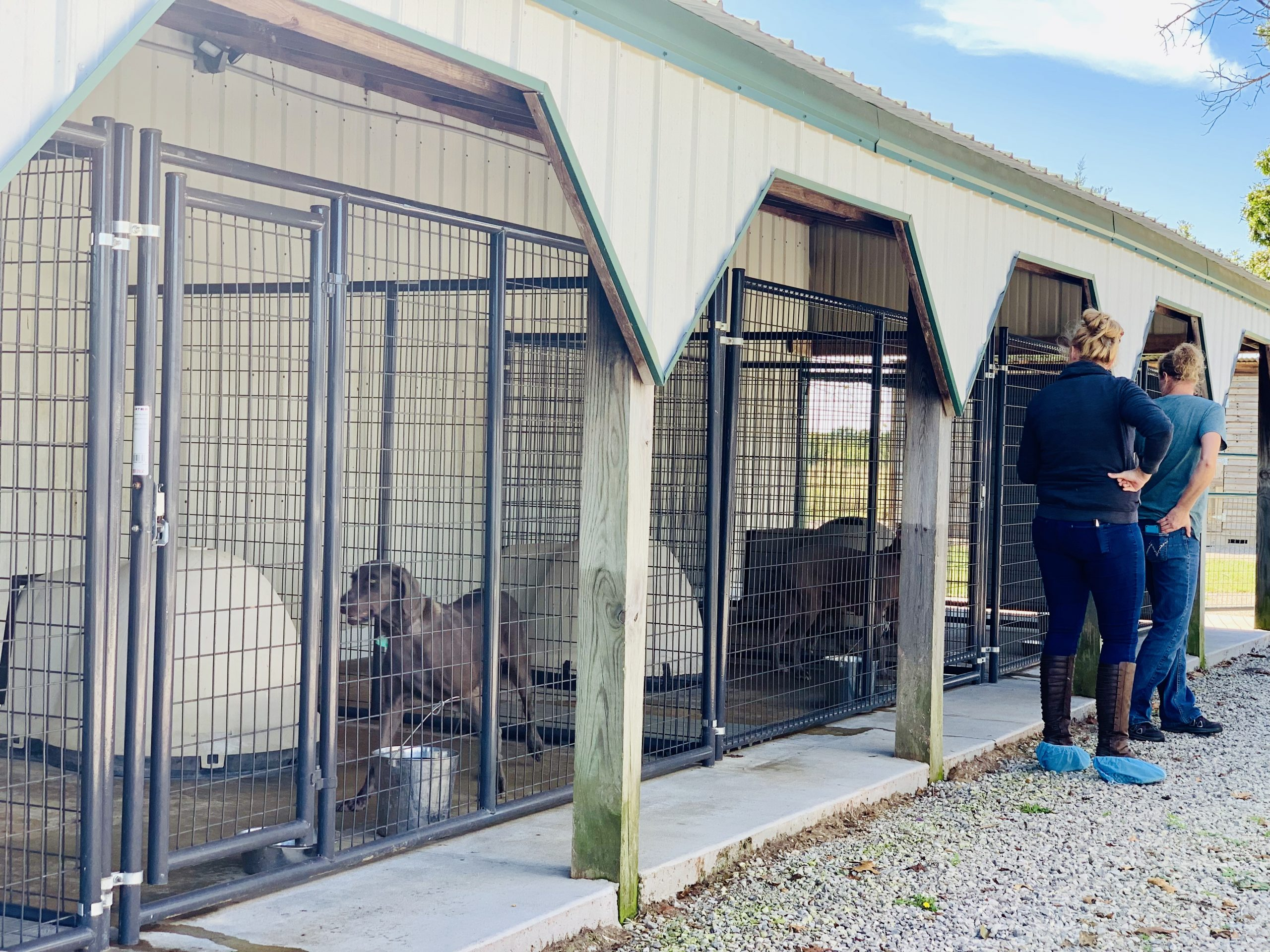 Another view of Cindy's kennel