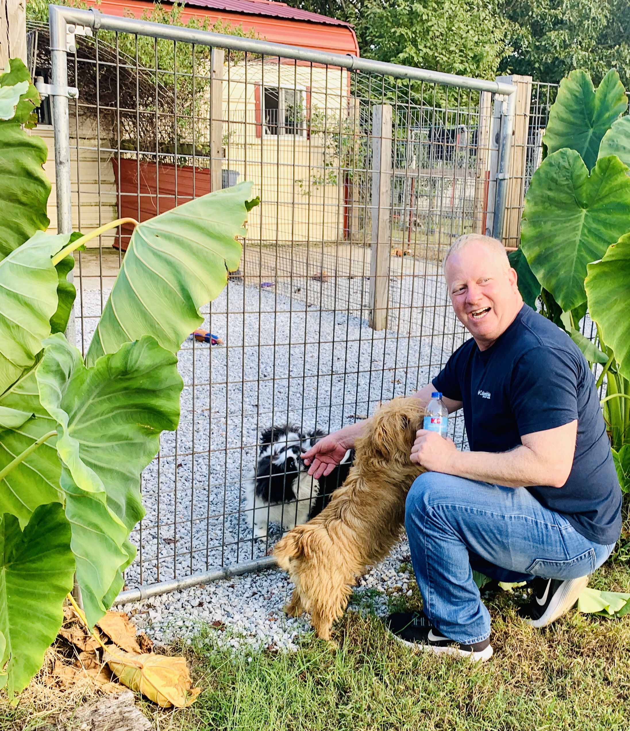 Frank Mineo Jr. interacts with one of Judy's dogs