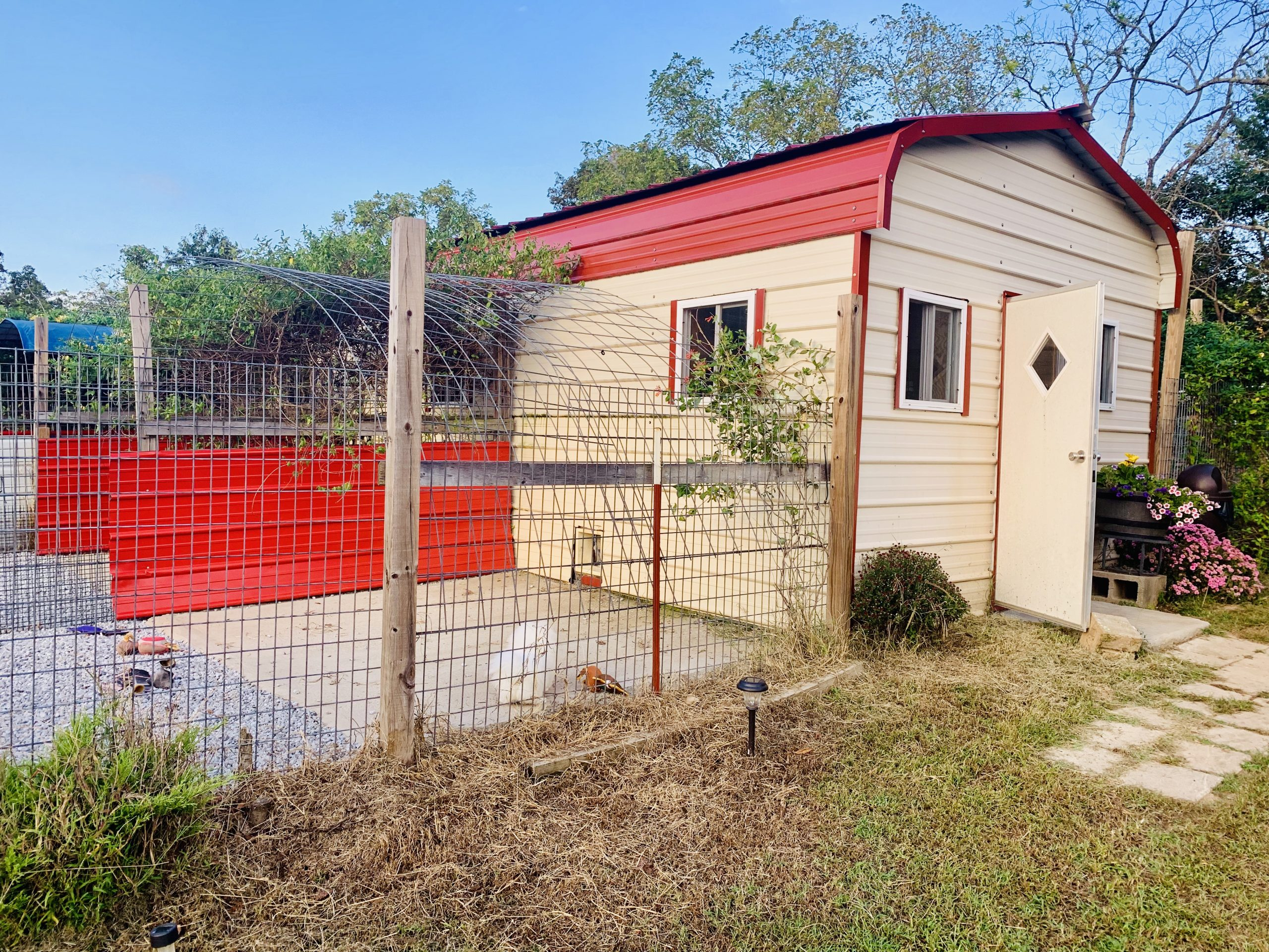 A view of Judy's kennel