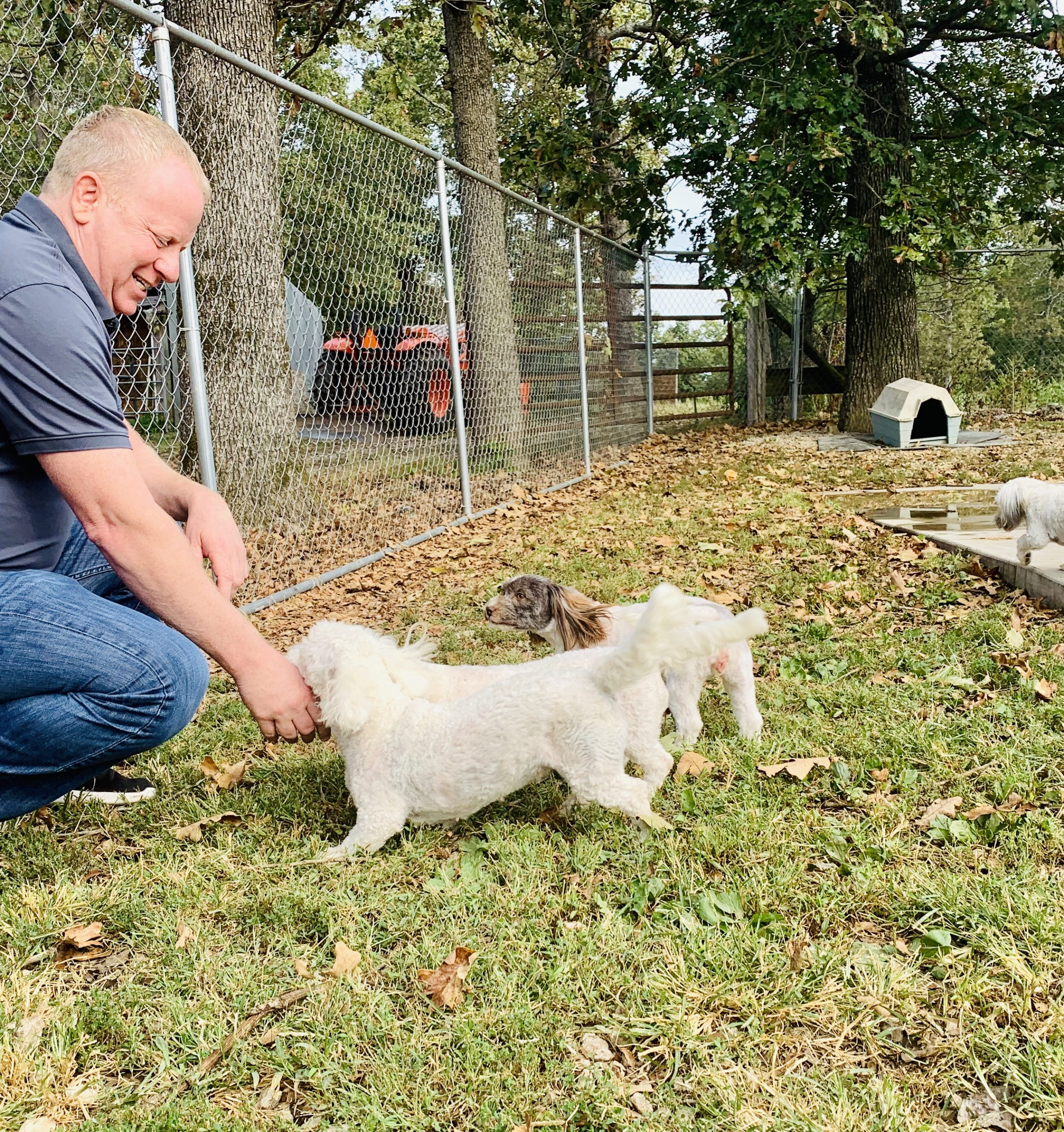 Frank Mineo Jr interacts with some of Kelley's dogs
