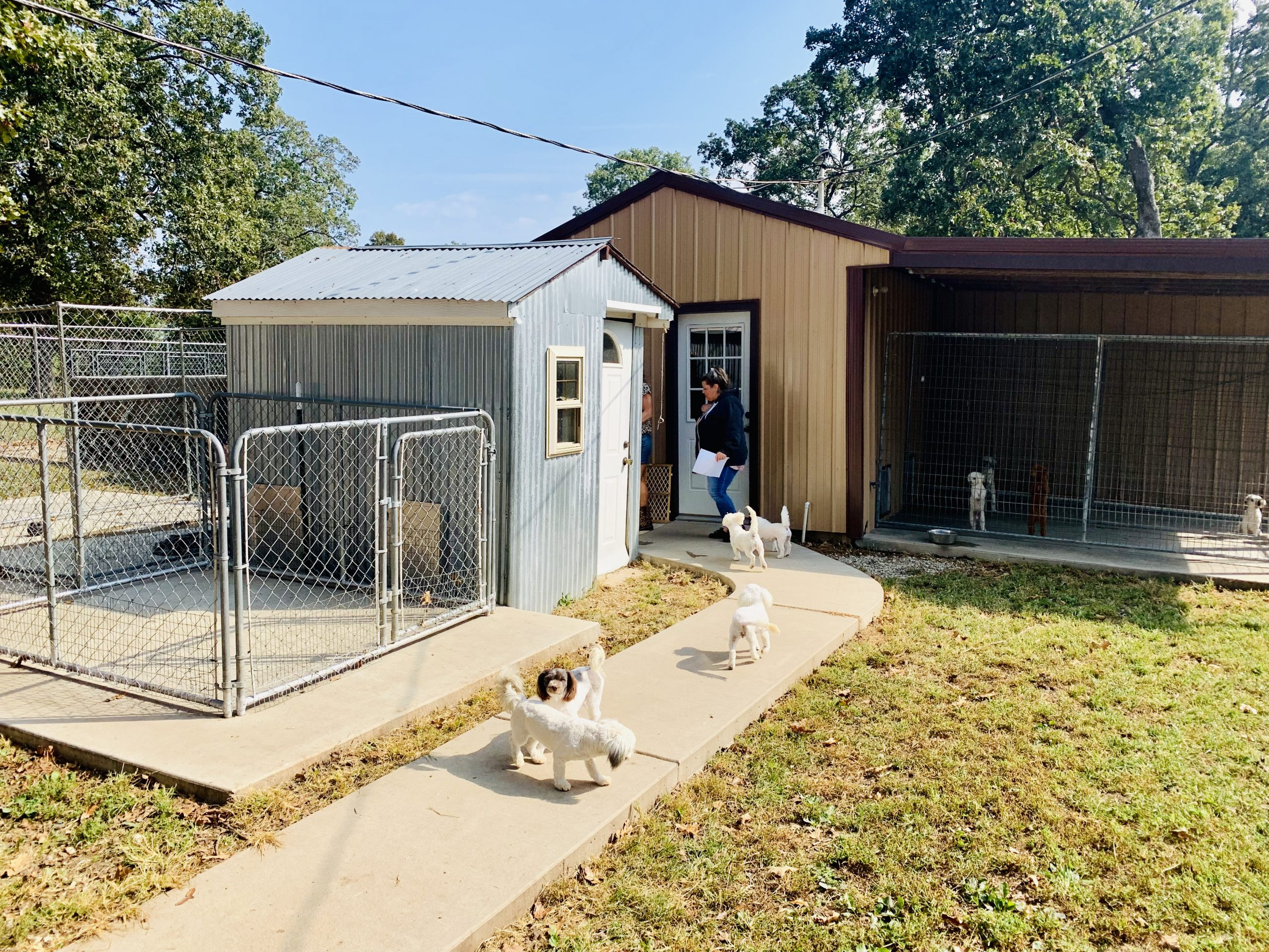 A view of Kelley's kennel