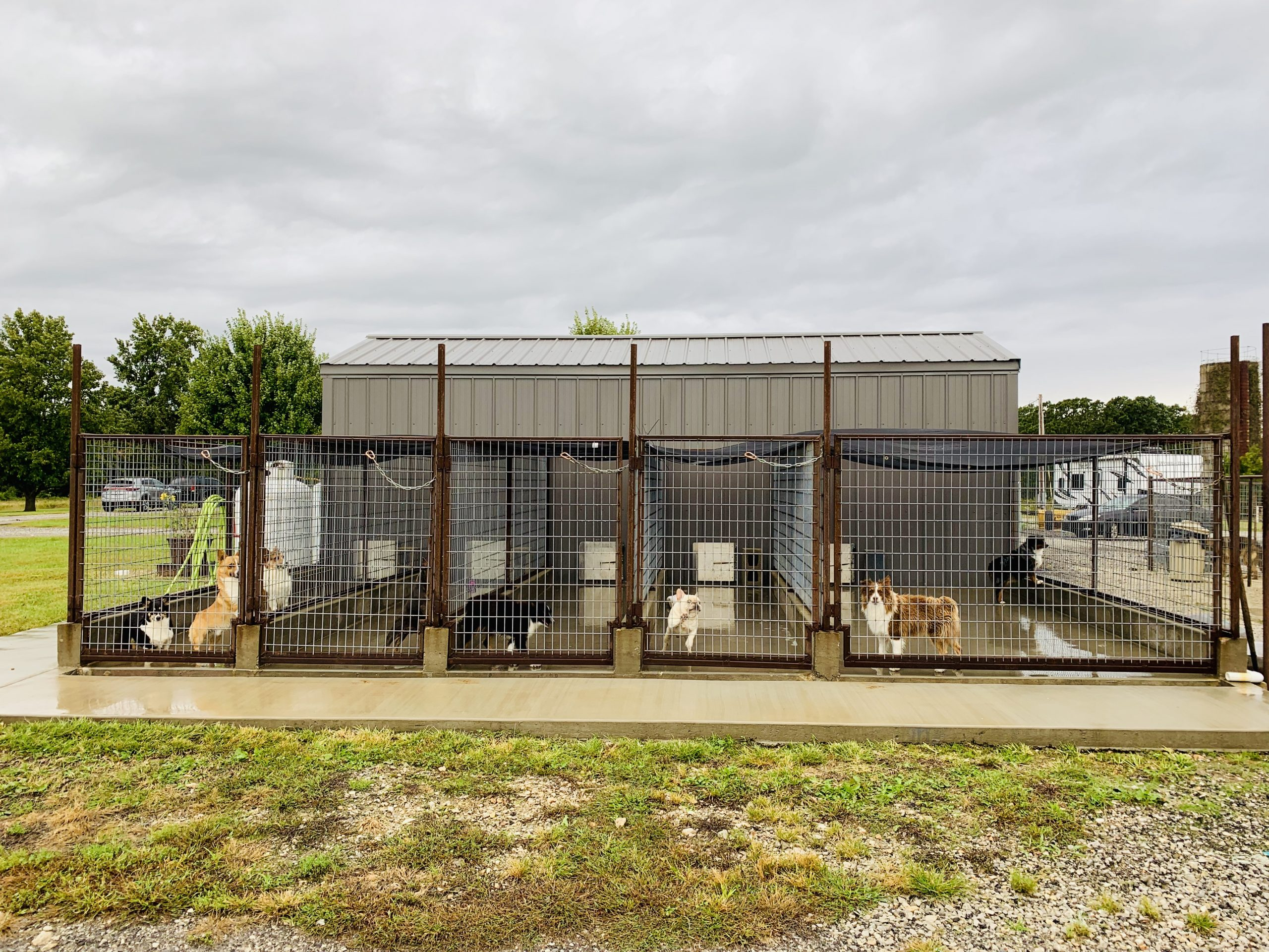 Outside look at kennels