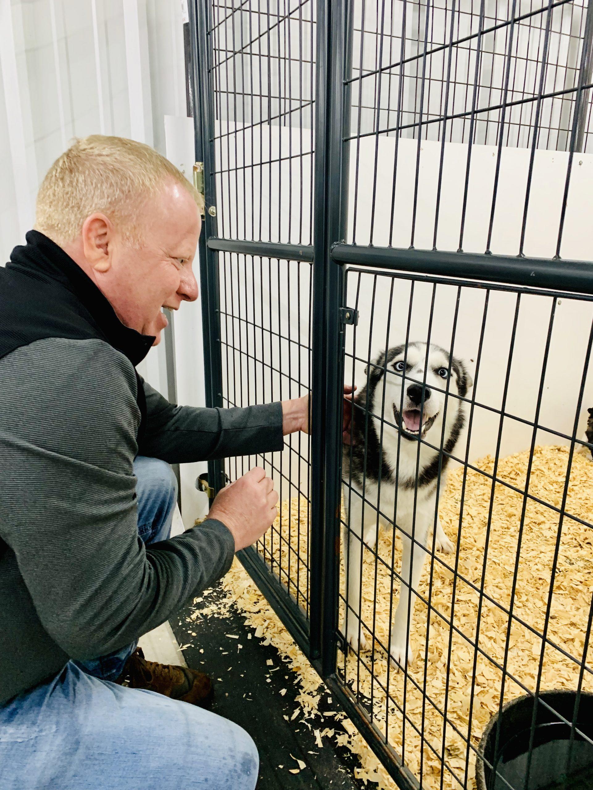 Frank Mineo Jr. visits Husky adult female