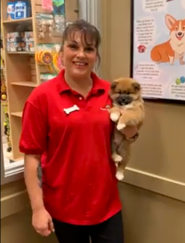 Store associate with a puppy