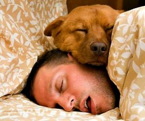 Man laying in bed with a dog laying on top of his head