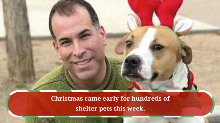 Christmas Comes Early to Homeless Pets. Read the story on AZFamily.com. Puppies Animal Kingdom Arizona