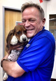 Employee gives a basset hound a big hug