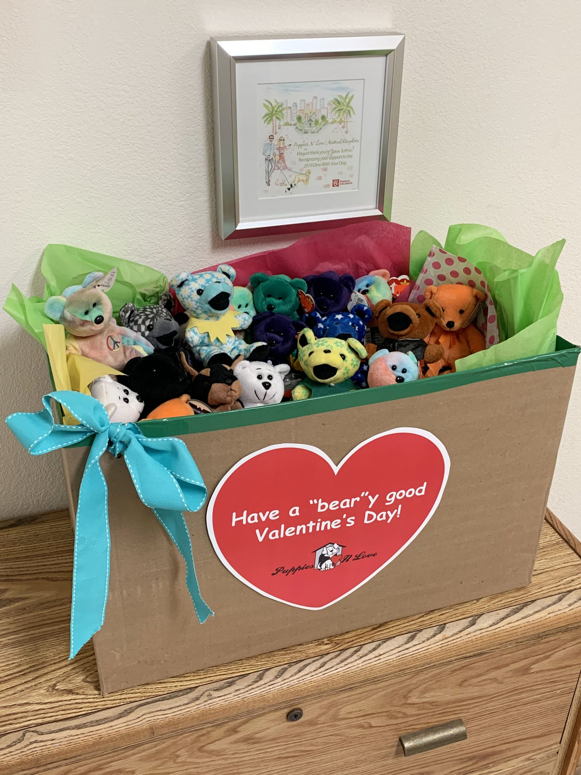 Beanie Baby Donation
