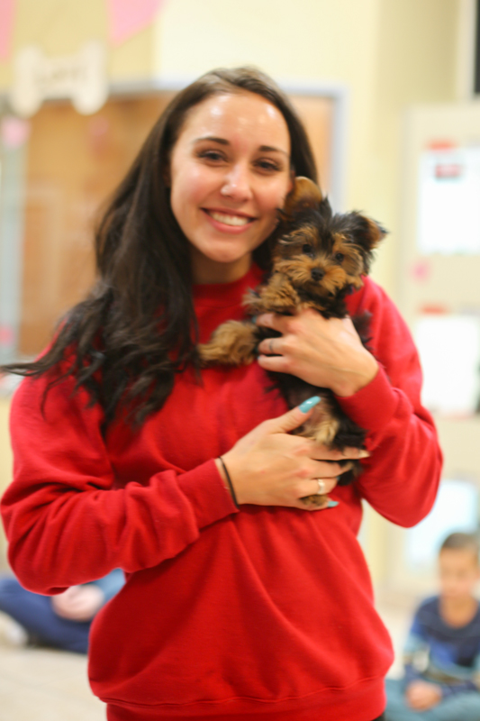 Customer socializes with a Yorkie at a Puppy Party